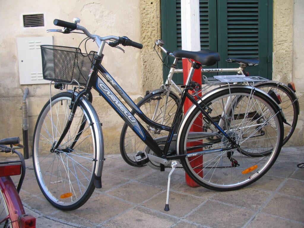 CICLO PASSEGGIATA 2011 005